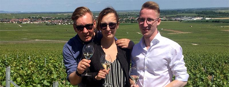 Vingård i champagne